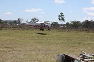 Savannah from Kilcoy was one of the 13 Savs that flew into the December fly in